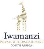 Iwamanzi Private Game Lodge I Luxury African Safari